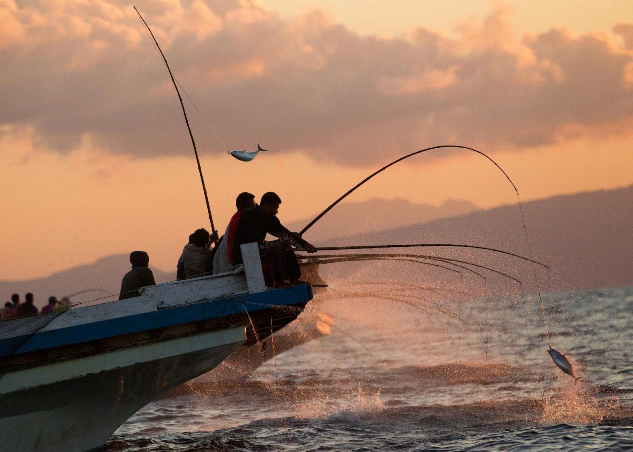 Экскурсия рыбалка